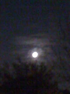 daddy moon