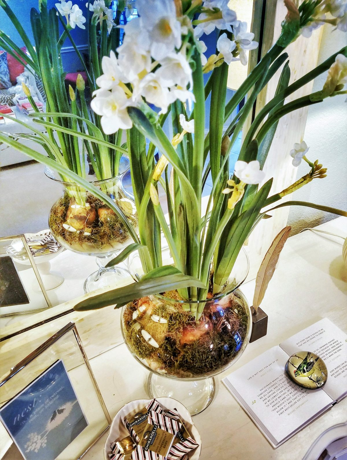How to Make a Centerpiece Using Magnolia Market Paperwhites